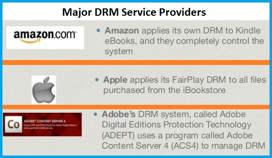 What types of DRM