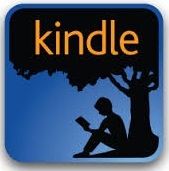 What Is Kindle Format
